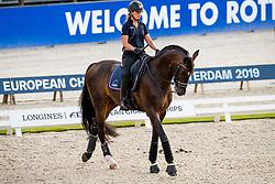 Barbancon Mestre Morgan, ESP, Sir Donnerhall II Old<br /> EC Rotterdam 2019<br /> © Hippo Foto - Sharon Vandeput<br /> 21/08/19