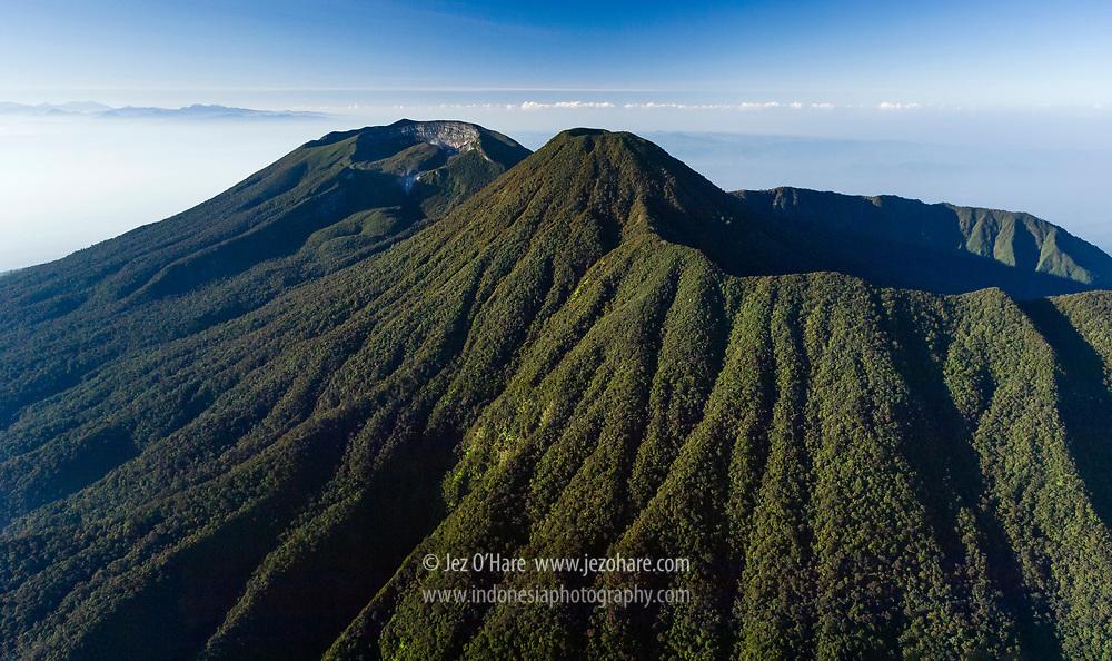 Mount Gede-Pangrango National Park, Bogor, West Java, Indonesia