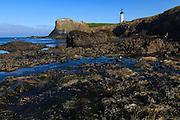 USA, Oregon, Newport, Yaquina Head, NLCS, tidepools at Cobble Beach and the Yaquina Head Lighthouse