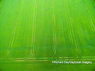 63801-11701 Tracks in wheat field-aerial Marion Co.  IL