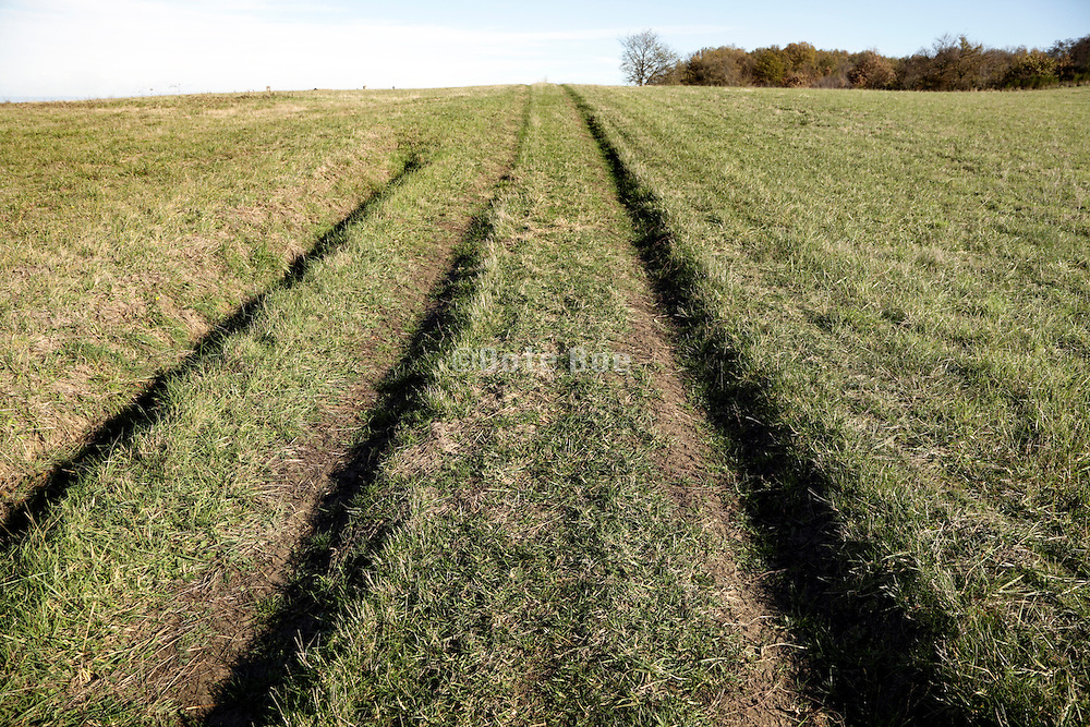 tyre tracks in agricultural grass field