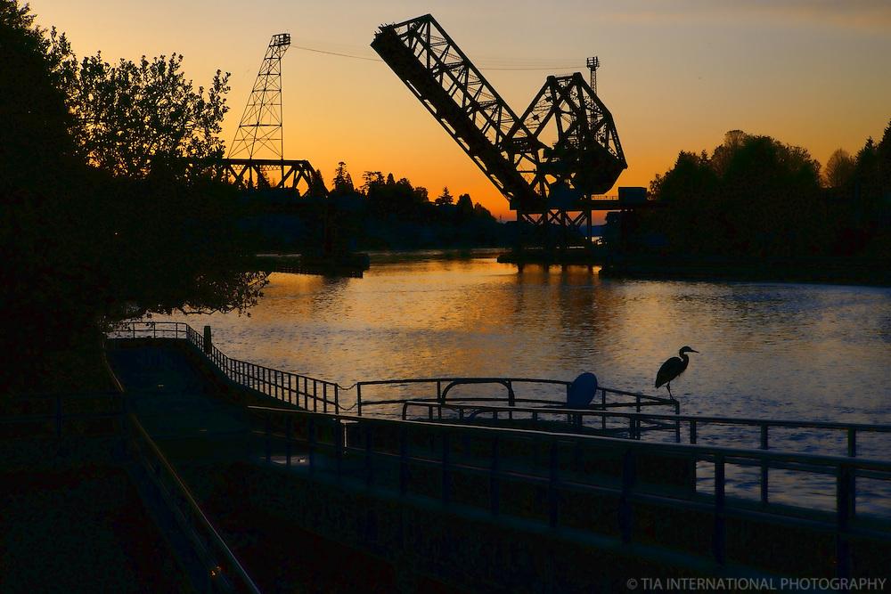 Chittenden (Ballard) Locks, Lake Washington Canal