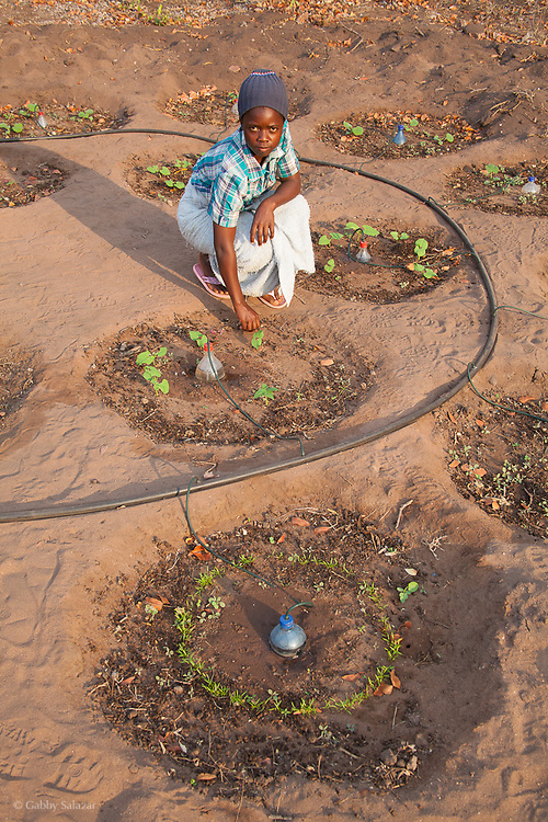 Sustainable gardening project run by Tchuilu Trust, Hamakuya. Venda village in Limpopo Province, South Africa.