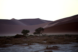 NAMIBIA SOSSUSVLEI 22APR14 - The Deadvlei during sunrise in the Sossusvlei in the Namib Desert, Namibia.<br /> <br /> Sossusvlei is a salt and clay pan surrounded by high red dunes, located in the southern part of the Namib Desert, in the Namib-Naukluft National Park, which is one of the major visitor attractions of Namibia.<br /> <br /> jre/Photo by Jiri Rezac<br /> <br /> © Jiri Rezac 2014