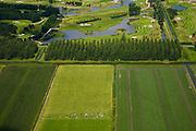 Nederland, Noord-Holland, Purmer, 14-07-2008; koeien grazen in een van de laatste stukken oorspronkelijk polder van de Purmer; in de bovenste helft van de foto het Purmerbos (aangelegd bos!) met golfterrein...; het golfterrein wordt geexploiteerd door een 'keten', Burggolf BV, met vestigingen door geheel Nederland; vrije tijd, leisure. .luchtfoto (toeslag); aerial photo (additional fee required); .foto Siebe Swart / photo Siebe Swart