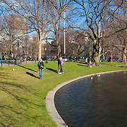 People feeding ducks in the Public Garden of Boston