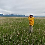 Denver Holt glasses the grasslands of the Ninepipe National Wildlife Refuge looking for short-eared owls. Montana