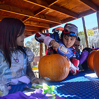 """102613  Adron Gardner/Independent<br /> <br /> """"Princess"""" Alisha Natonabah, left, watches as brother """"Iron Patriot"""" Donovan digs in to carve a pumpkin during Zoo Boo at the Navajo Nation Zoo in Window Rock Saturday."""