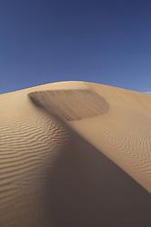 Sand dune, UAE, December 29, 2007. Photo by Silvia Baron / i-Images.