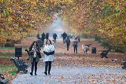 © Licensed to London News Pictures. 16/11/2018. London, UK. People out and about in Greenwich Park today with the cold autumnal weather.Photo credit: Grant Falvey/LNP