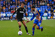 Wimbledon defender Toby Sibbick (20) in action  during the EFL Sky Bet League 1 match between Shrewsbury Town and AFC Wimbledon at Greenhous Meadow, Shrewsbury, England on 2 March 2019.