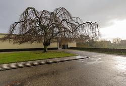 Noorderbegraafplaats, Dudok, Hilversum, Noord Holland, Netherlands