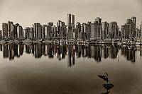Avian Tai Chi @ Coal Harbour, Vancouver