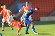 Brad Inman and Curtis Tilt during the EFL Sky Bet League 1 match between Blackpool and Rochdale at Bloomfield Road, Blackpool, England on 6 October 2018.