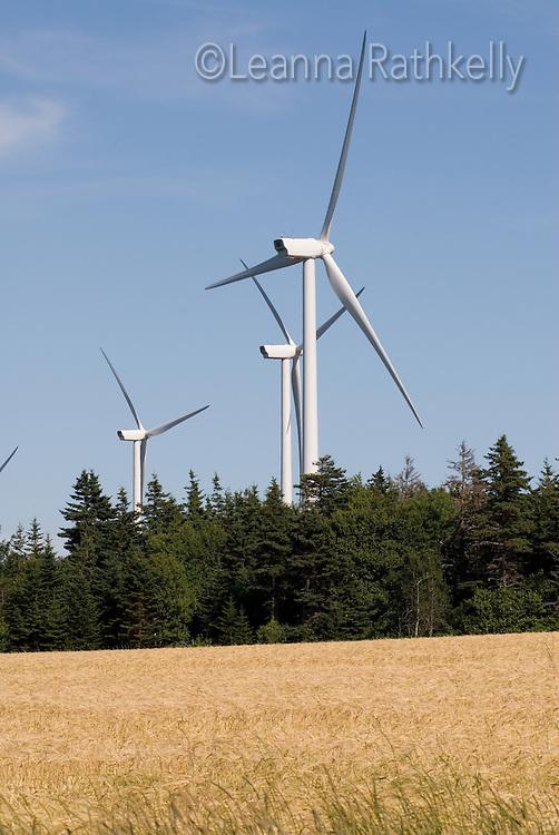 Eastern Kings wind farm near Elmira/Souris in PEI generates power.