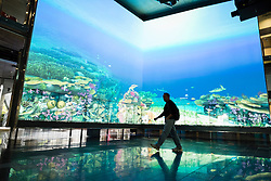 Large multimedia video screen showing virtual reef at The Cube centre at Queensland University of Technolgy QUT in Brisbane Australia