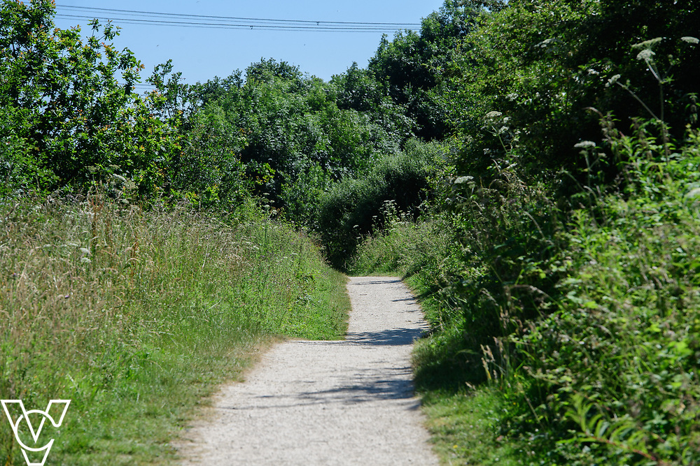 North Kesteven District Council (NKDC) stock images: Whisby Nature Park, Whisby.<br /> <br /> Picture: Chris Vaughan Photography for NKDC<br /> Date: June 25, 2018