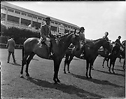 "02/08/1960<br /> 08/02/1960<br /> 02 August 1960<br /> R.D.S Horse Show Dublin (Tuesday). ""Investment"" a 7 year-old Hunter Mare owned by Mr E.W. McMechan, Rose Lodge, Belsize Road, Lisburn, Co. Antrim and ridden by William McCully, Newtownards, won Class 17 for Hunter Mares up to 13st. to 14st. at the Dublin Horse Show."