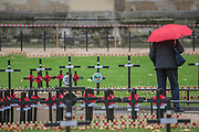 Visitors to the Abbey pause for a look a - Volunteers from the Royal British Legion set out the Field of Remembrance outside Westminster Abbey. The field comprises thousands of poppies on crosses to remember individuals and units. It will be completed in time for a Royal visit on Thursday . London 07 Nov 2017.