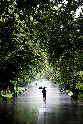 A man walks through the rain in Regents Park, London, as wet weather continues to hit the UK.