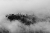 IFTE-NB-007629; Niall Benvie; View into the valley around Fliess from Kaunergrat visitor's centre; Austria; Europe; Tirol; trees; horizontal; concealed hidden revealed; black white; forest woodland; 2008; July; summer; fog mist rain cloud; Wild Wonders of Europe Naturpark Kaunergrat