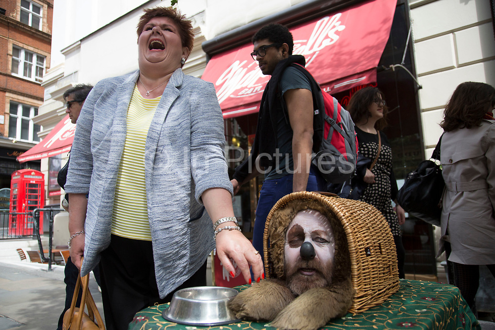 Street performer acts as a humourous dog. Collecting money whilst making fun and talking to his audience. Covent Garden in the West End of London. This is a very popular for living statues and other street performance, and busy with tourists.
