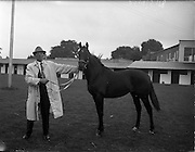 03/08/1960<br /> 08/03/1960<br /> 03 August 1960<br /> R.D.S Horse Show Dublin (Wednesday). Mr Christopher O'Doherty, Newcastle West, Co Limerick?