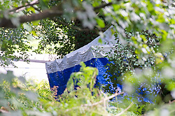 ©Licensed to London News Pictures 20/08/2019.<br /> Tunbridge Wells ,UK. A blue police tent at the scene. Police searching for missing 30 year old Sabrina Goacher in Kent have found a body in woodland off Church Road, Tunbridge Wells. Forensic teams are investigating with a police cordon in place. The scene is near to Tunbridge Wells town centre. Sabrina had been reported missing on Sunday.  Photo credit: Grant Falvey/LNP