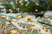 Christmas Sugar Cookies -Food Photography