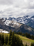 The view from near the Obstruction Peak site of Olympic National Park, Washington, USA.