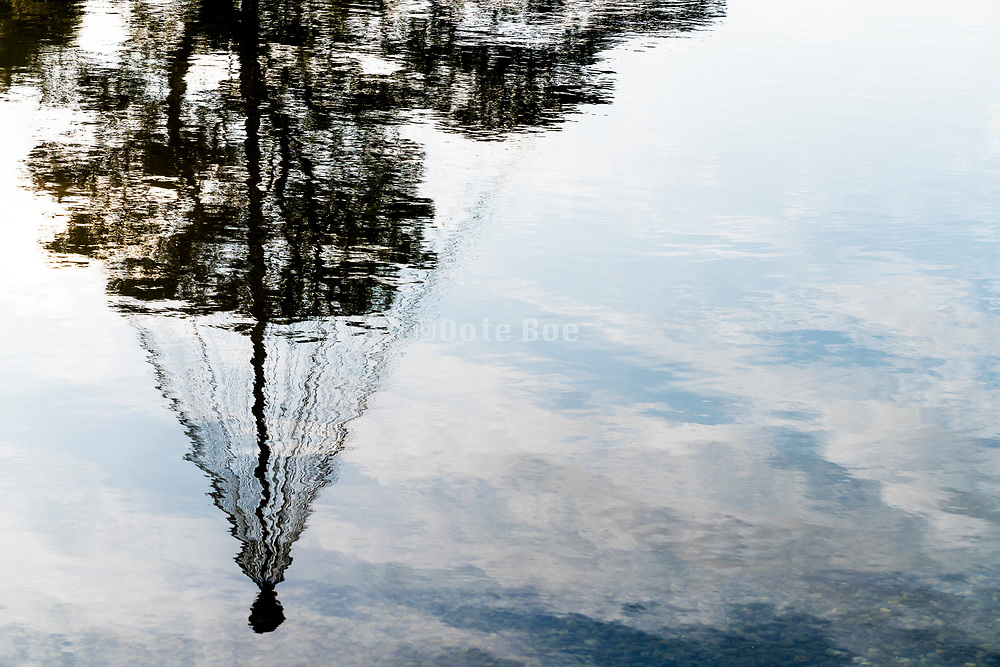 water reflection of a Japanese garden pine tree with the winter support ropes Tokyo Showa Kinen Park gardens