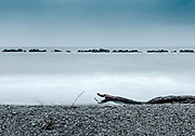 Photography: Color, Digital on Aluminium, Canvas, Forex or photographic paper.<br /> <br /> A wooden snake at 5 Terre beach.<br /> <br /> PRICE: 150,00 €<br /> Shipping included<br /> 7 day money-back guarantee<br /> <br /> <br /> <br /> Styles:<br /> <br /> Fine Art<br /> Minimalism