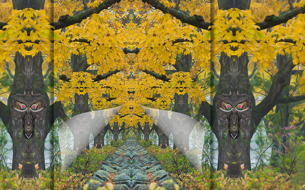 """""""Autumn  Entryway Gatekeepers"""", derivitive image created from a photo of maple trees, overcast light, October, Cheshire County, New Hampshire, USA"""