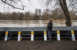 © Licensed to London News Pictures. 01/02/2021. Weybridge, UK. A local woman stands next to flood defences installed along the river Thames at Weybridge in Surrey. Extra precautionis being taken because In 2014 Weybridge and the surrounding area was badly hit by flooding. Photo credit: Ben Cawthra/LNP