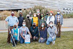 Birds collected as part of Lights Out Texas campaign, Dallas, Texas, USA. Lights Out is a project of the Cornell Lab of Ornithology to issue BirdCase alerts for heavy bird migrations to assist local buildings turn off their lights.