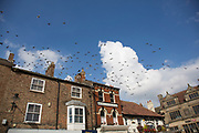 Pigeons take flight above the Market Square in Thirsk, Yorkshire, England, UK. Thirsk is a small market town and civil parish in the Hambleton district of North Yorkshire, England. Historically part of the North Riding of Yorkshire. It was the home of author James Herriot.