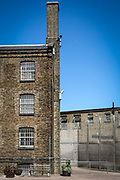 A sunny corner of the exercise yard in HM Prison Wandsworth is a Category B men's prison at Wandsworth in the London Borough of Wandsworth, South West London, United Kingdom. It is operated by Her Majesty's Prison Service and is one of the largest prisons in the UK with a population over 1500 people. (photo by Andy Aitchison)