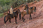 Brazilian 'Vaquieros' Cowboys<br /> Caatinga Habitat<br /> Piaui State, NE BRAZIL.  South America<br /> <br /> Fully leather clad against harsh spines of Caatinga Vegetation.