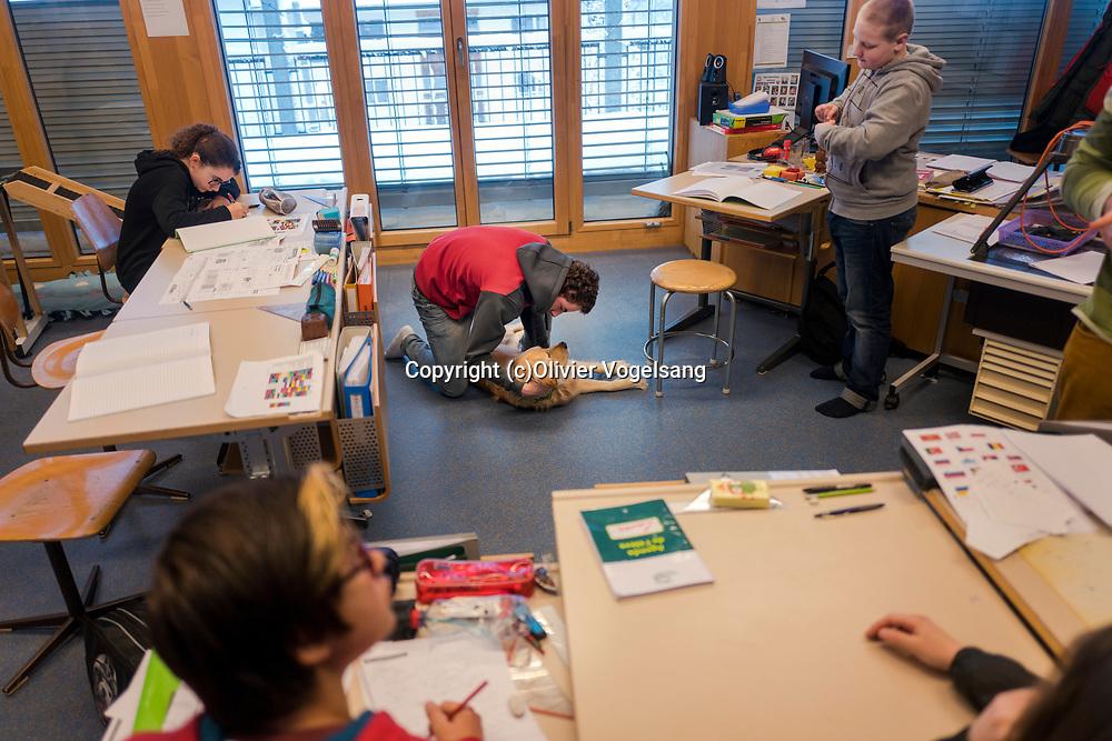 Saint-Cergue, décembre 2017. reportage dans une école spécialisée à St-Cergue, dans laquelle un chien scolaire est utilisé depuis le début de l'année pour venir en aide et calmer les élèves. C'est le premier chien à être utilisé de la sorte en Suisse romande. Tahiti est bichonnée par les élèves. © Olivier Vogelsang