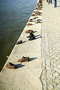 Eastern Europe, Hungary, Budapest, Shoes on the Danube Promenade by Gyula Pauer and Can Togay is a Hungarian Jewish WWII Memorial