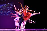 Fotografo di teatro e danza