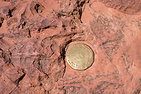 Geological survey marker, Observation Point, Zion National Park, located in the Southwestern United States, near Springdale, Utah.
