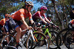 Sara Bergen (CAN) at Deakin University Elite Women Cadel Evans Road Race 2019, a 113 km road race starting and finishing in Geelong, Australia on January 26, 2019. Photo by Sean Robinson/velofocus.com
