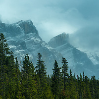 Peaks of the Canadian Rockies tower above a forest.