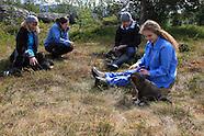 05: TROMSO SUMMER SLED DOGS