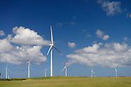 Wind tribunes east of Tarwin Lower. Gippsland, Victoria. Australia