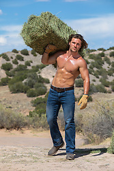 hot cowboy with open shirt carrying a bale of hay on a ranch hot shirtless muscular man working on a ranch