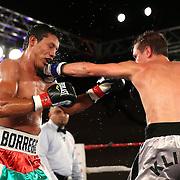 Andrey Klimov (black/grey shorts) beats Guillermo Avila during a Telemundo boxing match at the A La Carte Pavilion  on Friday, August 1, 2014 in Tampa, Florida. (AP Photo/Alex Menendez)