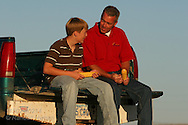 Kevin Gerlach and son, Seth, sit talking on pickup truck tailgate holding ears of corn on an August evening; Nevada, Iowa.