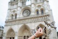Notre-Dame de Paris in France